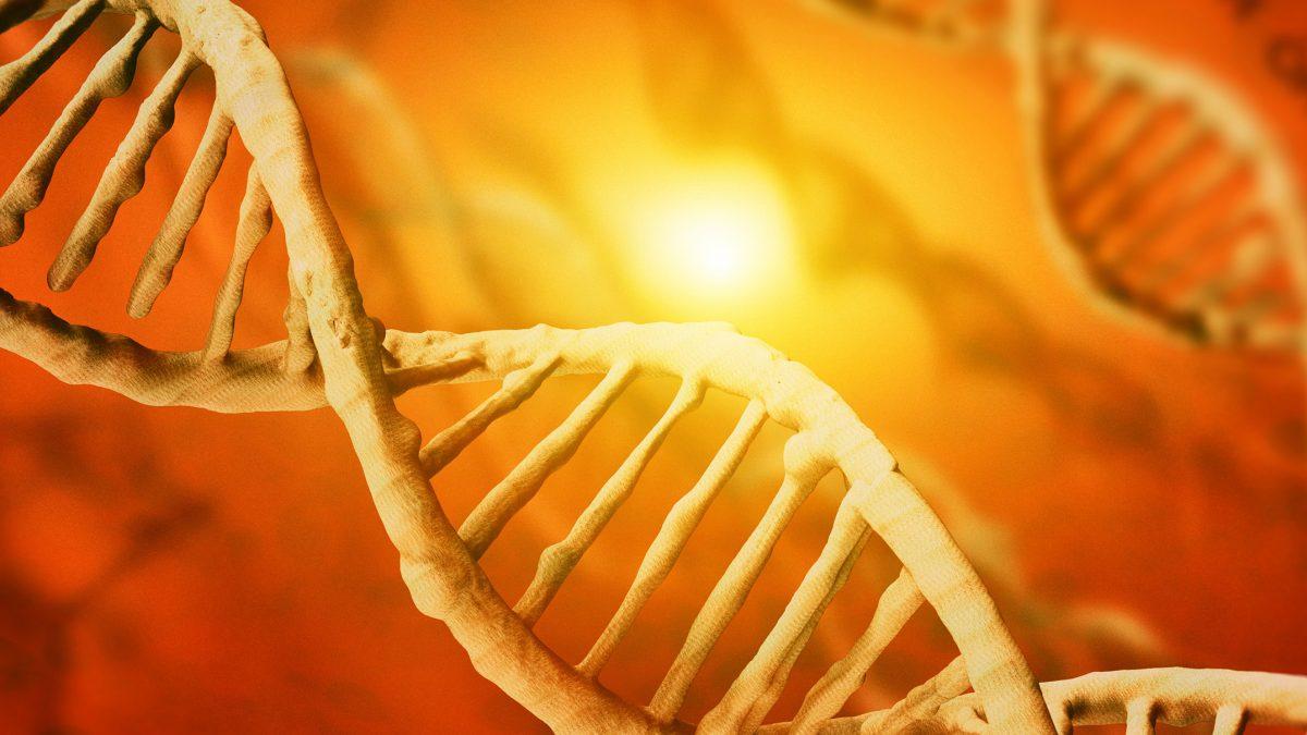 Клеточно-генетическая энергетика у детей при различных режимах обучения