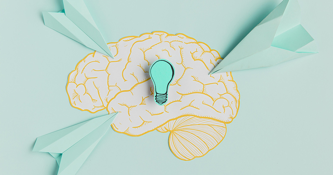 Среда изменяет размер мозга